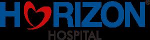 blue-horizon-logo