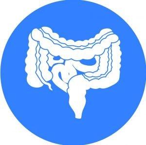 gastrointestinal icon 2
