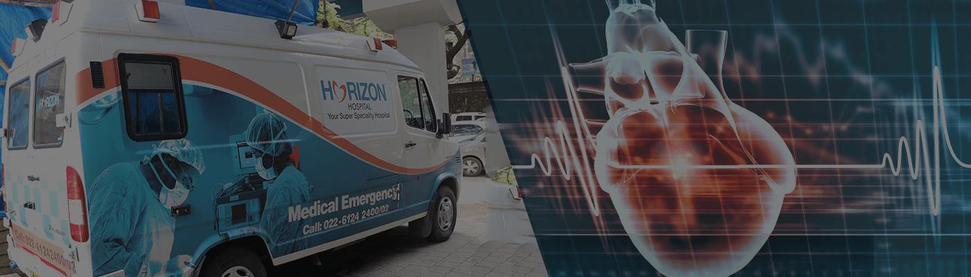 emergency ambulance-horizon hospital